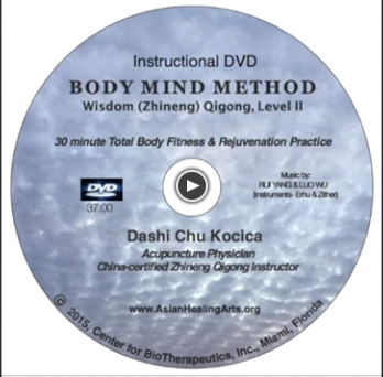 DIGITAL DVD:  BODY MIND METHOD- Wisdom (Zhineng) Qigong, Level II
