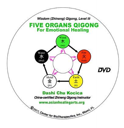 Digital DVD:  FIVE ORGANS QIGONG- Level III, Wisdom (Zhineng) Qigon