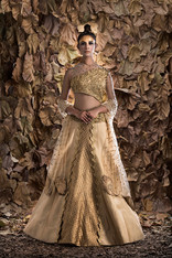 Shruti S one-sleeve lehenga.jpg