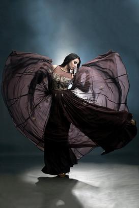 Shruti S georgette gown.jpg