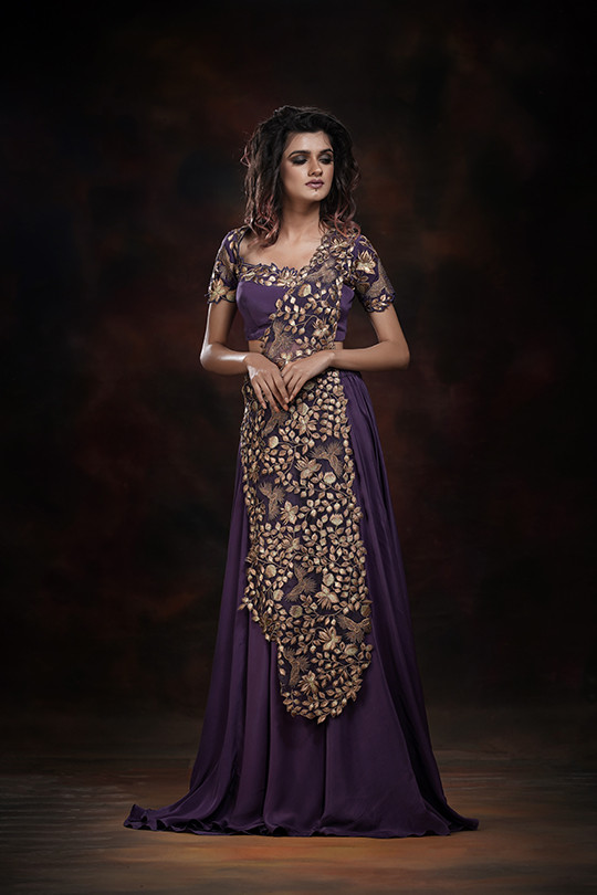 Embroidered Gown Saree
