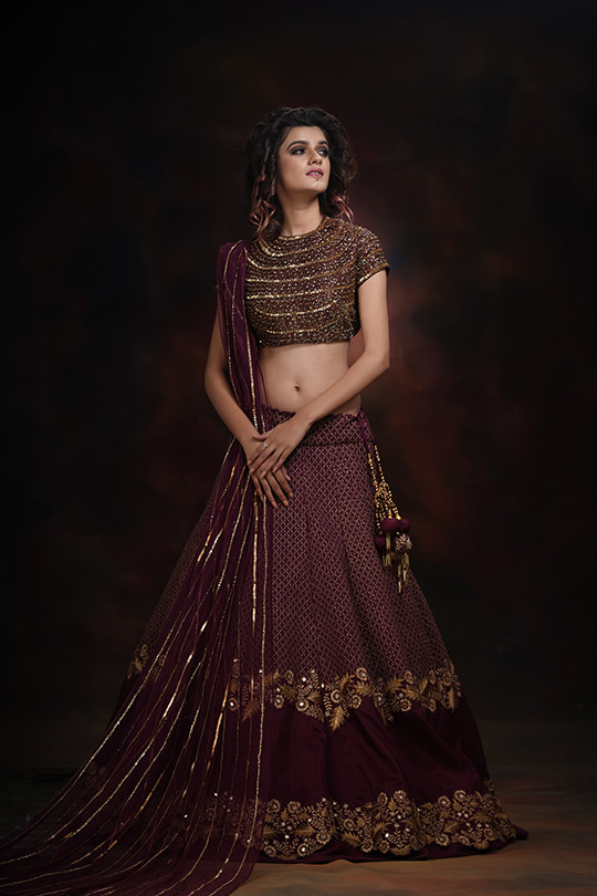 Shruti S double border lehenga choli.jpg