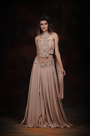 shruti s crop-top skirt.jpg