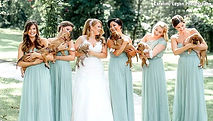 9.20.16-Bridal-Party-Holds-Rescue-Puppie