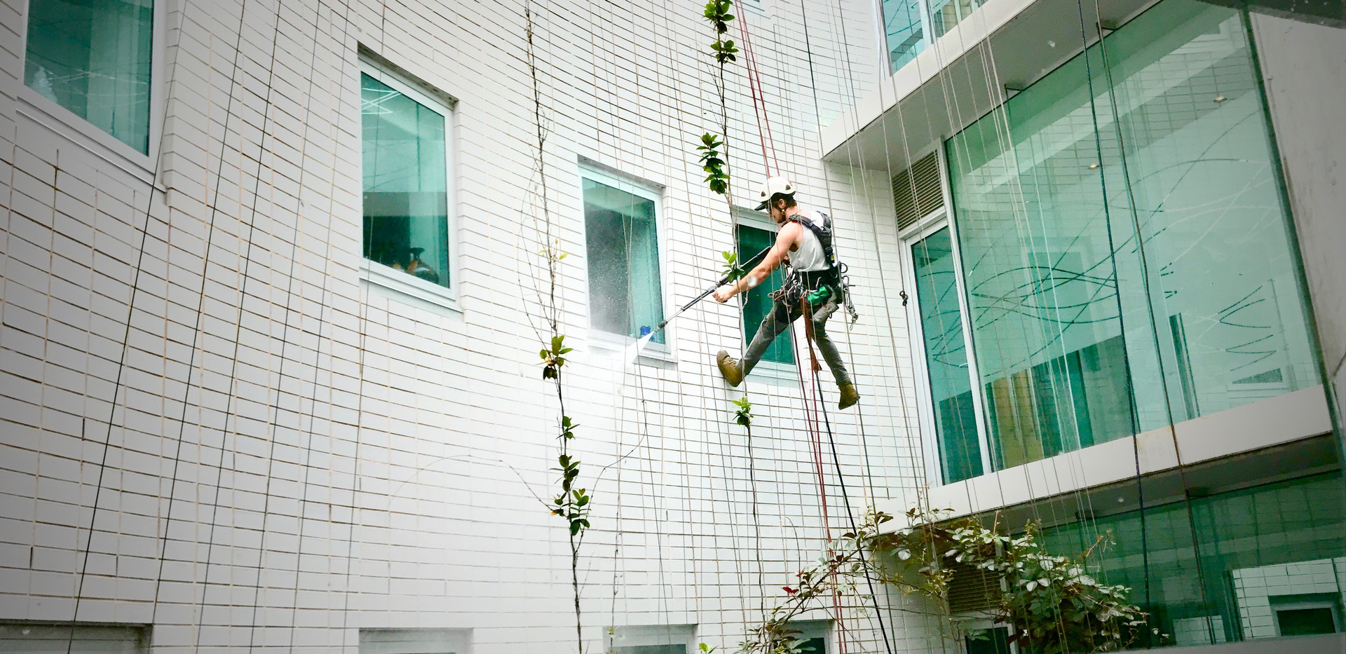 Leighs Window Cleaning - Ethan pressure cleaning on the ropes.