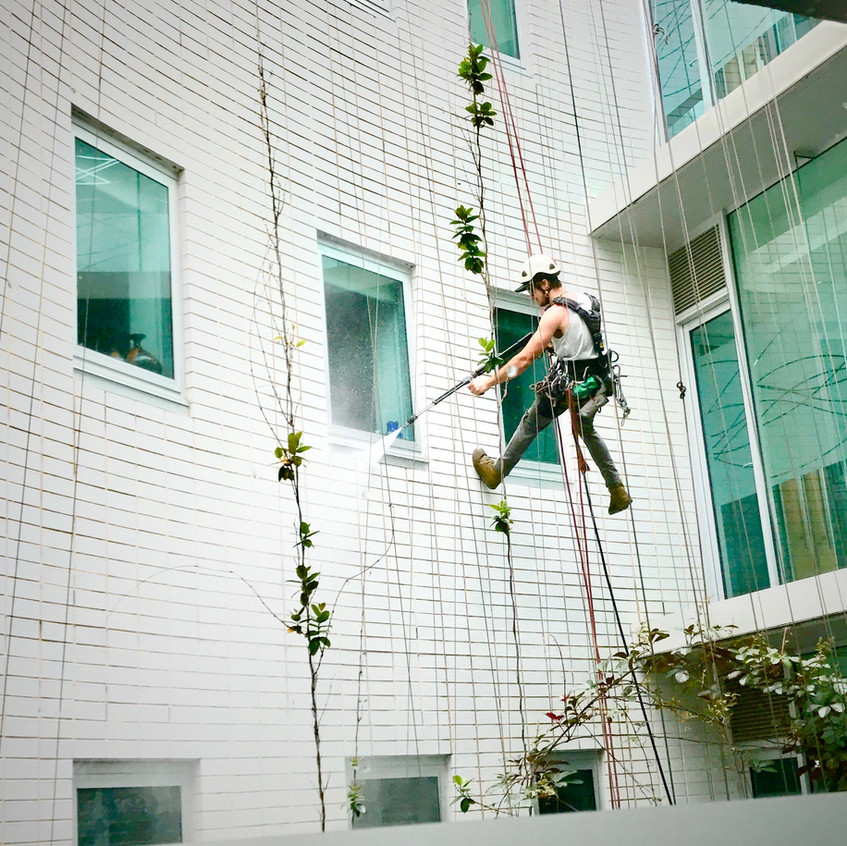 Ethan from Leighs Window Cleaning