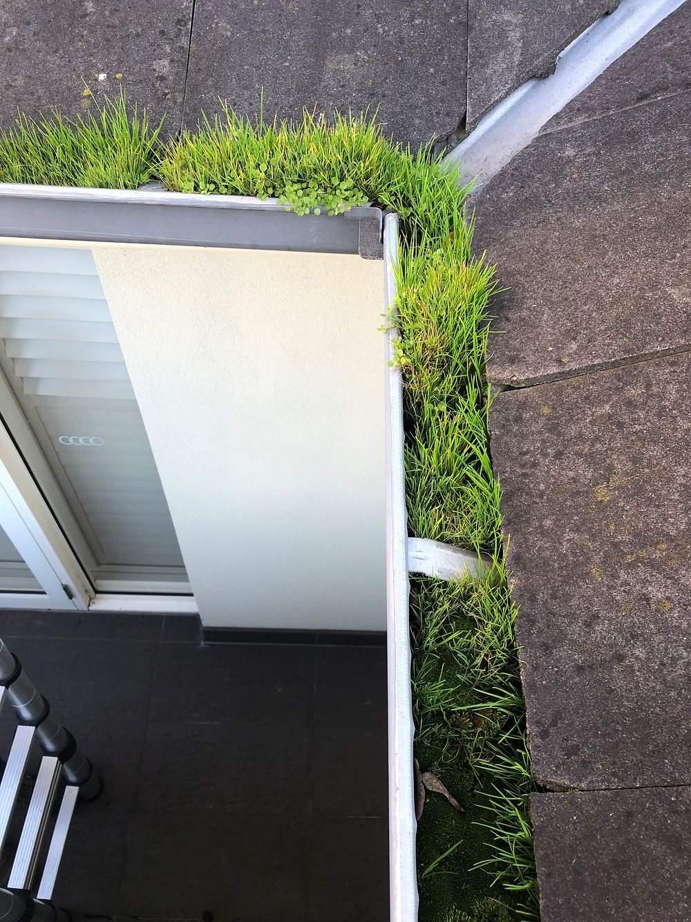 Leighs window Cleaning - Gutter cleaning