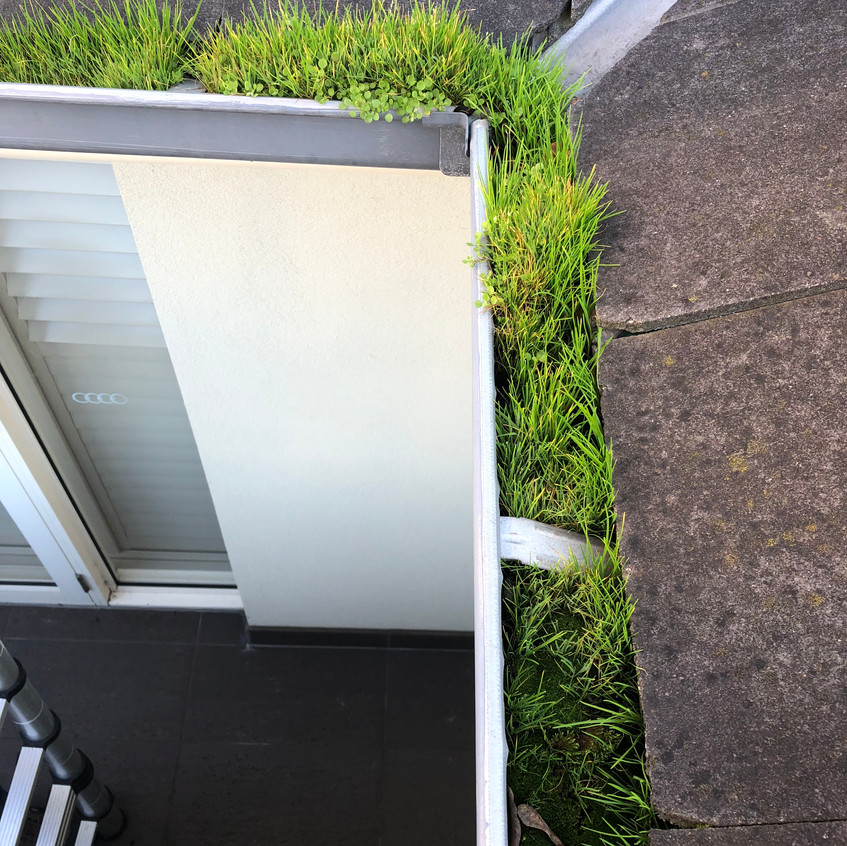 Leighs Window Cleaning Gutters