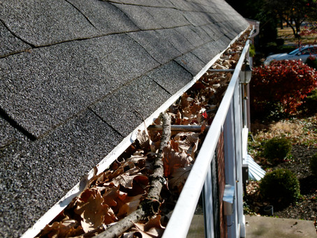 Yes-we do gutters also!