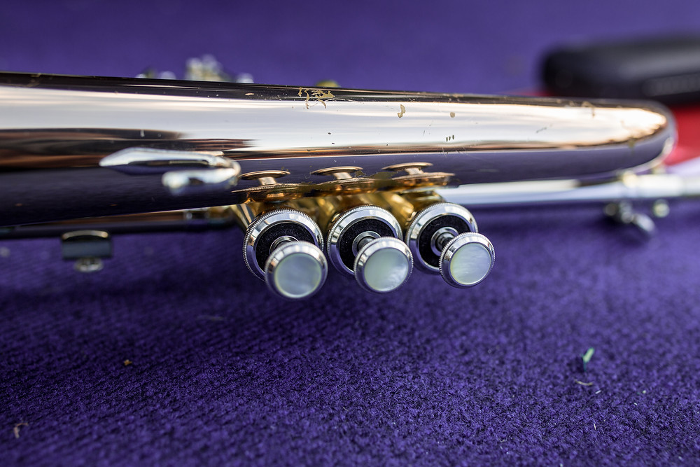 Western flute
