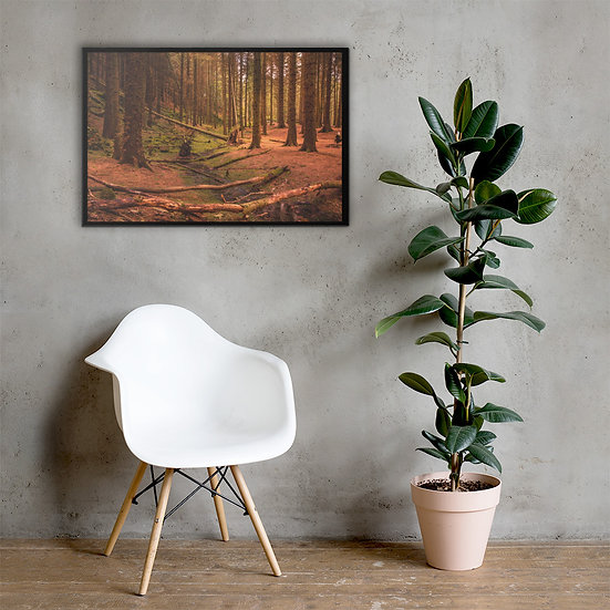 Forest Peak District Beautiful Landscape Canvas