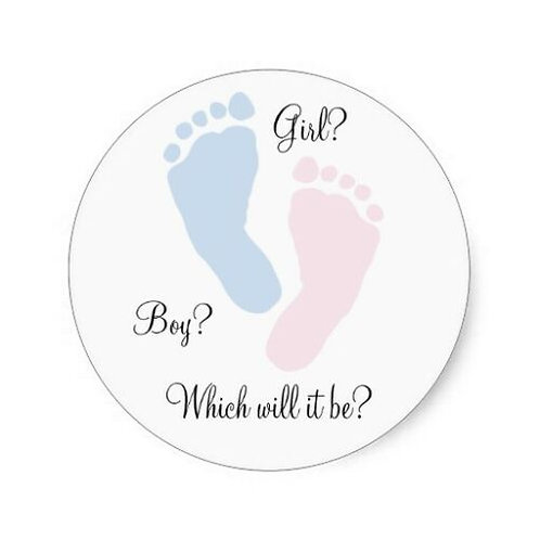 15 x Gender Reveal Edible Cupcake Toppers