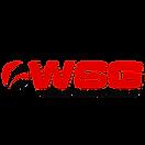 Логотип WSG.png
