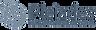 Pleiades Logo-header.png