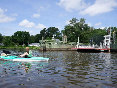 Bay Journal writer paddles from Seaford to Sharptown