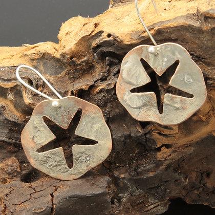 Starfish coin earrings
