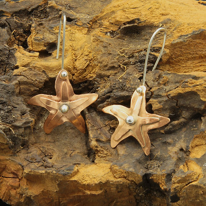 Double Stars and silver earrings