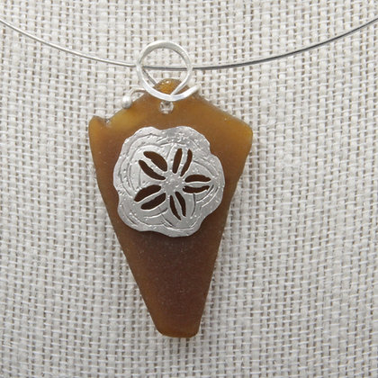Sand dollar star fish glass