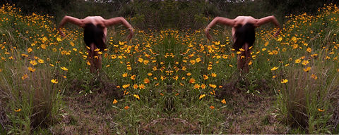 the_meadow_photography_2020.jpg