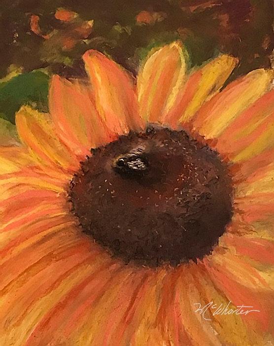 *SunflowerWithBeeSignedFAA.jpg