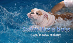 BnB swim.jpg