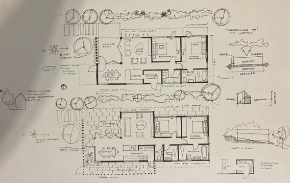 Plan development