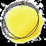 logo_studio poetica.png