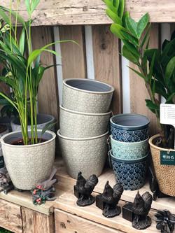 RHS Indoor Pots