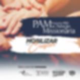 [Internet] PAM IBBN.png