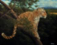 Kilimanjaro Leopard 40x50.jpg