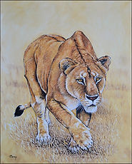 Stalking Lioness 30x24.JPG