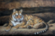 Tigers Cave 24x36.jpg