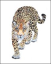 Leopard Stalking  2  oil on canvas24x18.