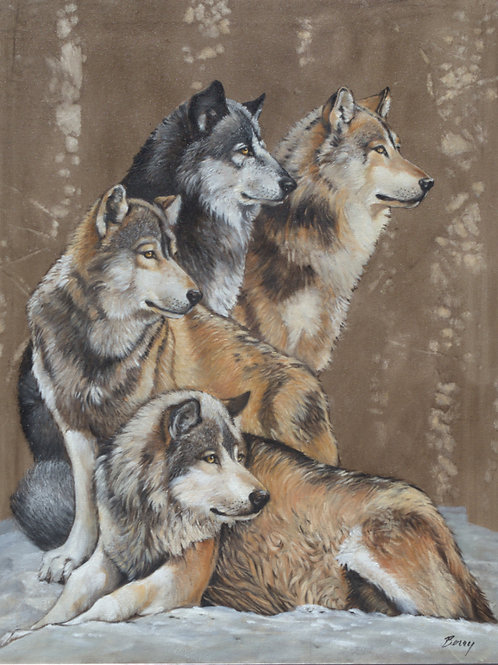 WOLF PACK 30X24