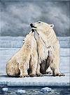 Love on the Ice 18x24.jpg