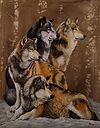 the wolf pack 30x24 oil.jpg