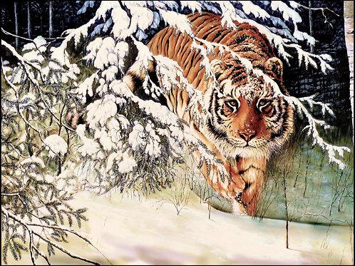 Siberian Hunter 36x48