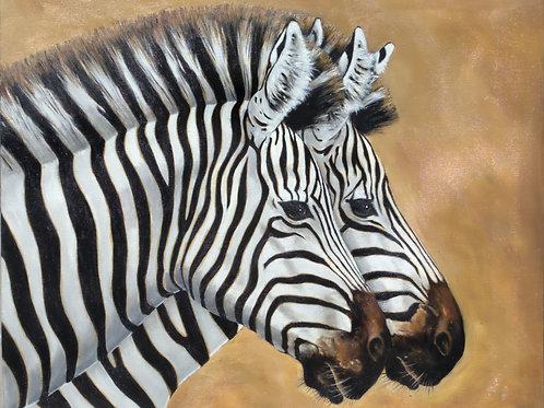 Zebra Mates  26x30