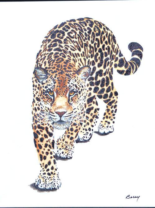 Stalking Leopard 1