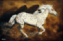Appaloosa War Pony   24 x36 oil.jpg