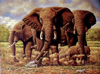 Elephants Challenge 30X40 $495. .jpg