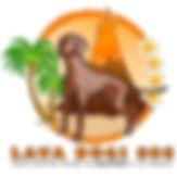 Lava Dogs 808.jpg