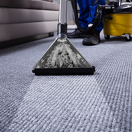 Carpet Extraction.png