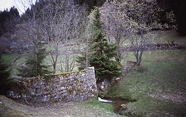 Bild78.png