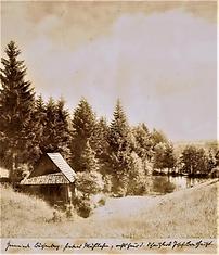 Bild81.png