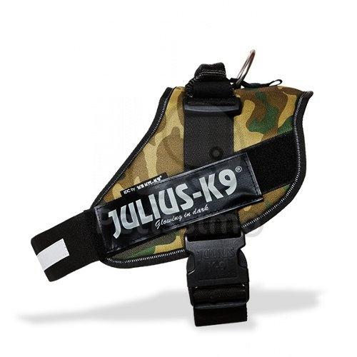 JULIUS-K9 IDC POWER, TEREN