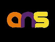 logo ans pantone-01.png