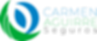 Logo Oficial CARMEN AGUIRRE SEGUROS.png