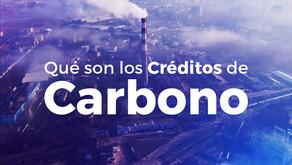 Qué son los Créditos de Carbono