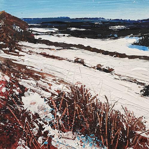 Snow (Denbies Hillside)